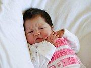 ŽANETA BERKIOVÁ si poprvé prohlédla svět v pondělí 14. března v 19.10 hodin. Při narození vážila 3 250 gramů a měřila 48 centimetrů. Doma v Křižovatce se z malé Žanetky raduje sestřička Vanesska, maminka Žaneta a tatínek Jaroslav.