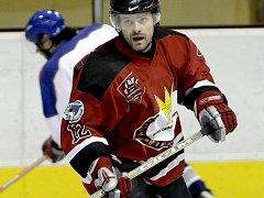 NA VYTOUŽENÉM  vítězství Františkových Lázní se výraznou měrou zasloužil Jiří Anděl, který konto hokejového týmu Medvědi Cheb zatížil třemi trefami.