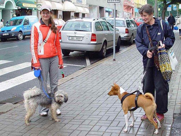 Vyhláška Chebu nařizuje majitelům psů mít své čtyřnohé miláčky na vodítku