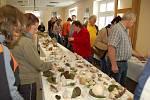 Výstavu hub v Mariánských Lázních brali lidé útokem.