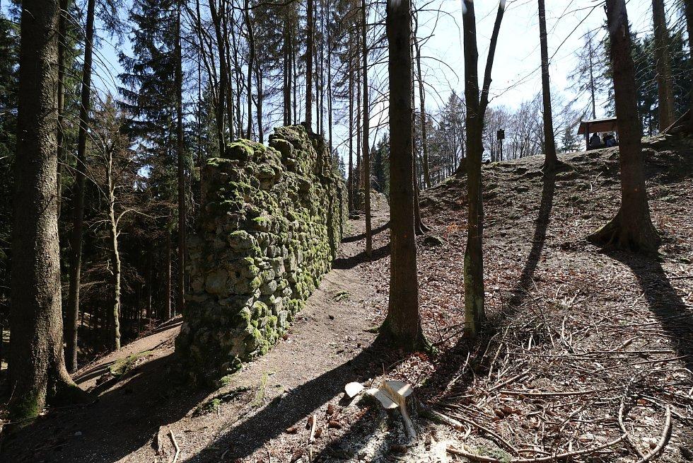 Hrad Kynžvart a blízké okolí.