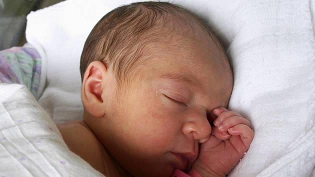 ALŽBĚTA LEVOVÁ se poprvé rozkřičela v sobotu 30. ledna ve 3.30 hodin. Na svět přišla s váhou 2700 gramů a mírou 48 centimetrů. Z malé Alžbětky se raduje celá rodina doma v Pomezí nad Ohří.