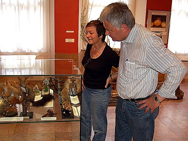 Výstava Svět drobných savců v chebském muzeu končí
