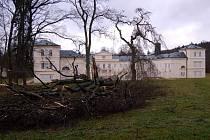 Orkán Kyrill řádil v loňském roce také v kynžvartském zámeckém parku, kde napáchal řadu škod. Za oběť mu padla řada stromů