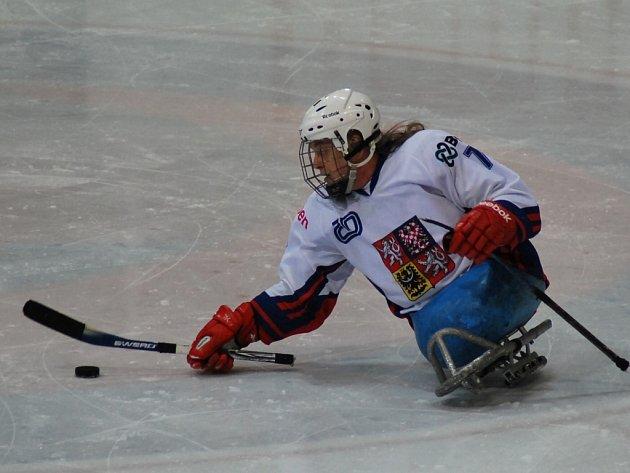 SLEDGE hokejista Míra Hrbek v akci při reprezentačním zápase.