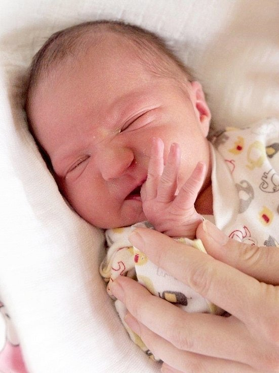 GABRIELA DOLEJŠOVÁ bude mít v rodném listě datum narození neděli 23. prosince v 13.16 hodin. Na svět přišla s váhou 3 050 gramů a mírou 50 centimetrů. Doma v Chebu se těší z malé Gabrielky maminka Alena spolu s tatínkem Jakubem.