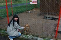 Nejen nenechavci, kteří kradou psy, se najdou v chebském útulku. Jednou z dobrých duší, které útulek podporují, je Gabriela Brechler Ingeborg Klara z německého Wunsiedelu.