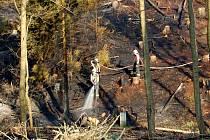 Požár lesního porostu u státní hranice nedaleko od Starého Hrozňatova na Chebsku