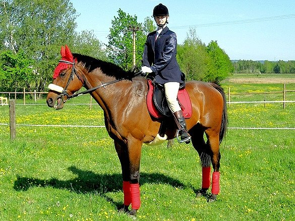 Veronika Kohoutová a její kůň