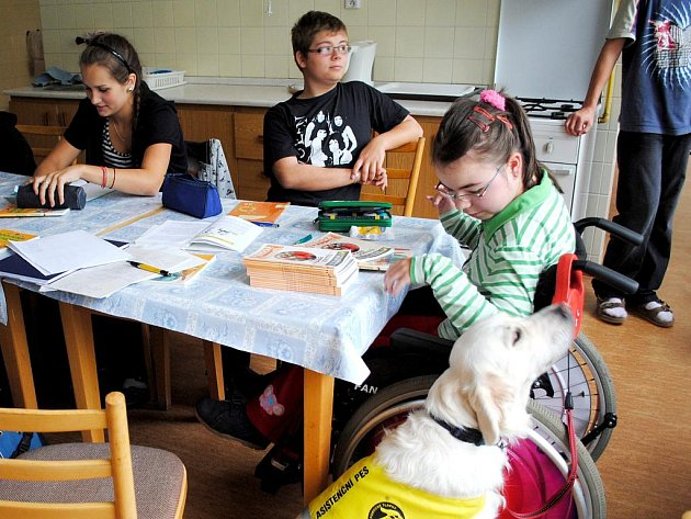 ASISTENČNÍ PES doprovází Ivanku Řeřichovou všude, i na hodinu pracovní výchovy do školní kuchyňky.