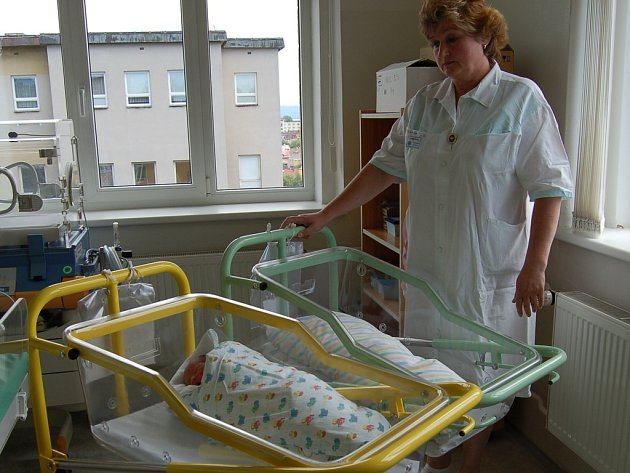 Na poplatcích za novorozence přijde nemocnice ročně asi o půl milionu korun