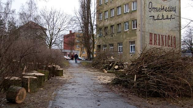 KDYŽ SE KÁCÍ STROMY, TÉMĚŘ VŽDY je mezi občany zle. Naposledy se obyvatelé Chebu zlobili při úpravách v parku u chebské Palackého ulice.