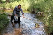 Plesenští rybáři zachránili část ryb před uhynutím