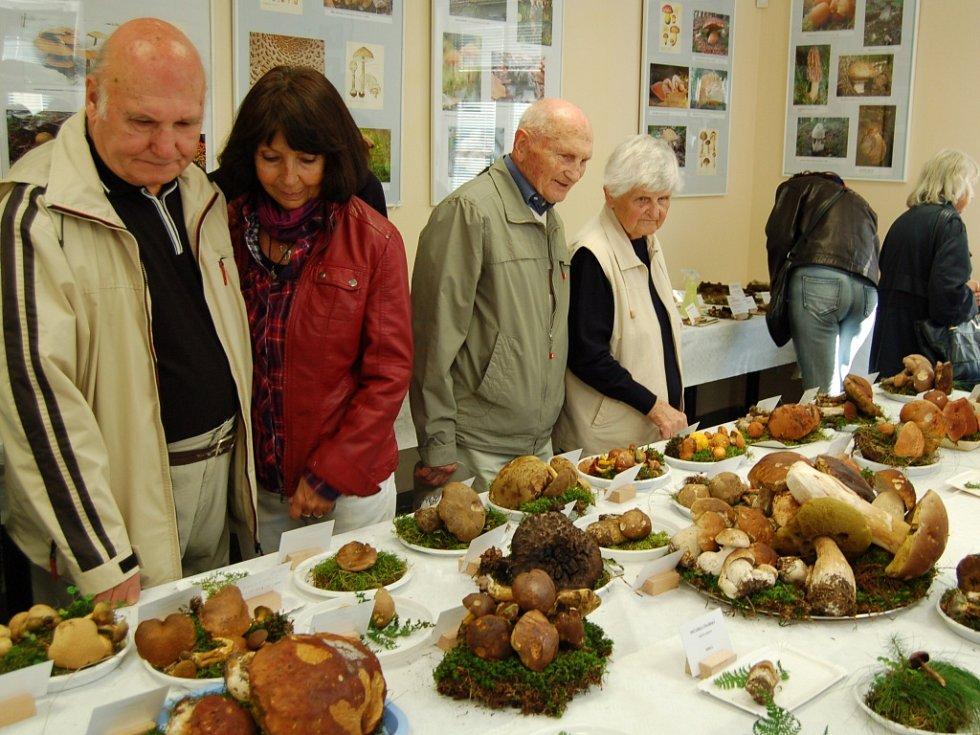 NADŠENCI z Mykologického klubu Slavkovský les pravidelně pořádají také oblíbenou velkou výstavu hub v Mariánských Lázních.