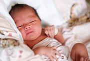 HA VY NGUYEN THI se narodila v neděli 10. ledna v 5.45 hodin. Při narození vážila 2 850 gramů a měřila 47 centimetrů. Doma na Svatém Kříži se z malé dcerušky těší maminka Xuan a tatínek Tung.