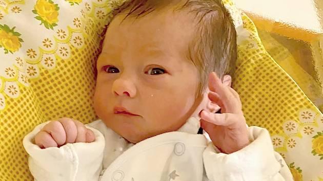 Jmenuji se Sofie Patáková narodila jsem se v Chebu dne 6.12.2019 v 0:52 hod vážila jsem 2580g a měřila jsem 48 cm. Doma ve Staré Vodě na mně bude čekat maminka Denisa a tatínek František.
