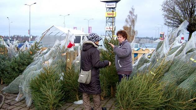 VÁNOČNÍCH stromků je dostatek a do svátků ještě dodavatel přiveze prodejcům další zásoby. Smrčky, borovice a jedle se budou prodávat ještě i 24. prosince, takže mají šanci i opozdilci.