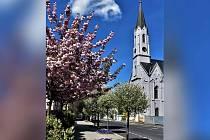 Nadační fond Historický Cheb finančně přispěje na opravu varhan a dvou vitrážových oken v evangelickém kostele Pokoje.