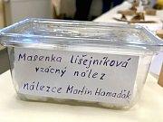 Tradiční houbařská výstava v Mariánských Lázních.