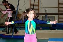 Úspěšný sportovní výjezd do krajské metropole mají za sebou františkolázeňská děvčata z oddílu sportovní gymnastiky působícím při františkolázeňském Domu dětí a mládeže Žírovice.