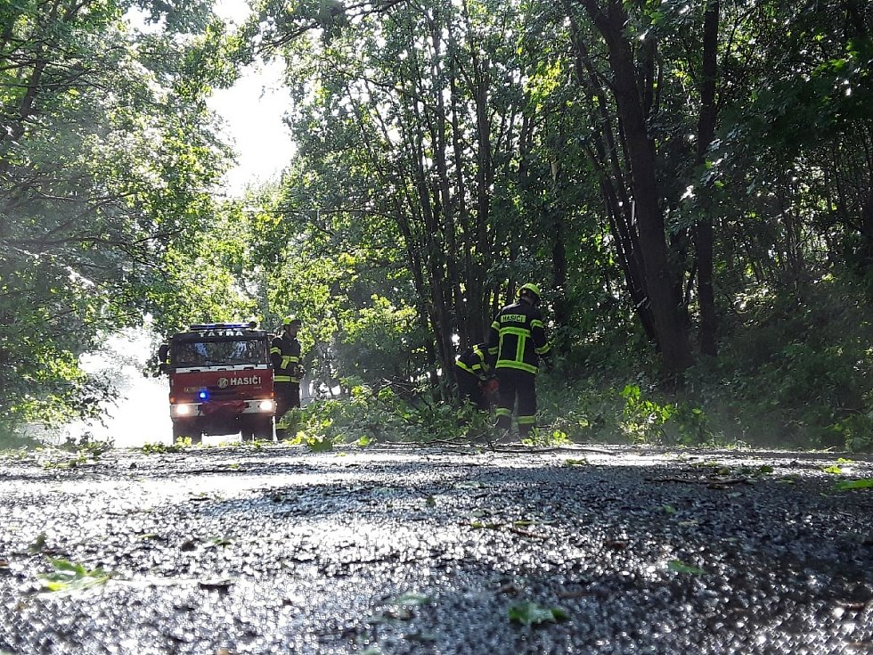 Krátká bouřka na Chebsku ve čtvrtek odpoledne zapříčinila dvacet výjezdů hasičů. Nejčastěji odstraňovali popadané stromy.