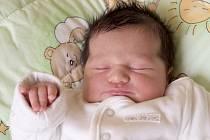 ALEXANDRA BORIKOVÁ se narodila v pátek 26. dubna v 9.25 hodin. Na svět přišla s váhou 3 660 gramů a mírou 50 centimetrů. Doma v Chebu se z malé Sašenky rtěší sourozenci Adam s Katkou, maminka Katka a tatínek Alexander.