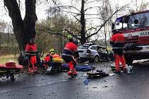 Letecky transportovat museli záchranáři v sobotu v podvečer v Podhradí u Aše vážně zraněného řidiče, který narazil se svým vozem do stromu. Foto: HZS Karlovarský kraj