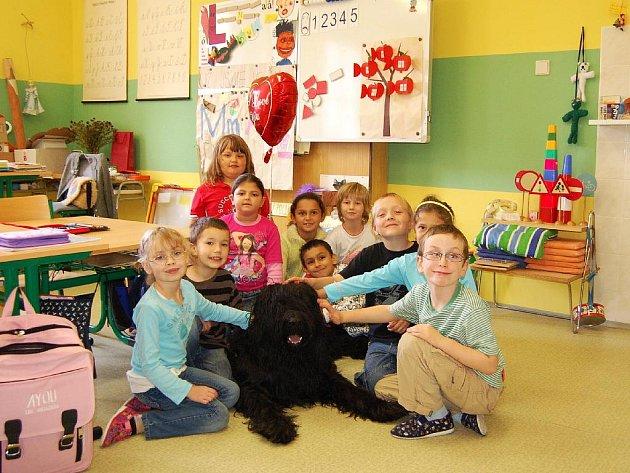 RELAX PŘI VYUČOVÁNÍ. Prvňáci ze 4. ZŠ V Chebu, kteří navštěvují logopedickou třídu, mají oproti jiným dětem výhodu. S učením jim pomáhá briard Jack. Pomocí canisterapie se děti uvolní a lépe pracují.