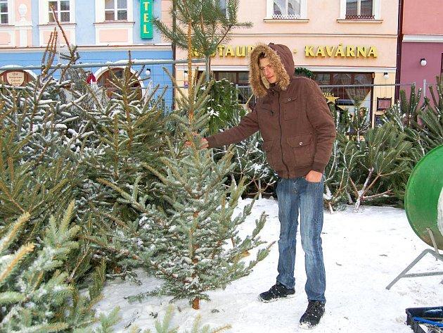 PRODEJNÍCH MÍST vánočních stromečků je na Chebsku víc než dost. Smrk se na nich dá sehnat za tři sta korun. Krádeže v lesích se proto zdají zbytečné i Patriku Teichnerovi z Chebu.