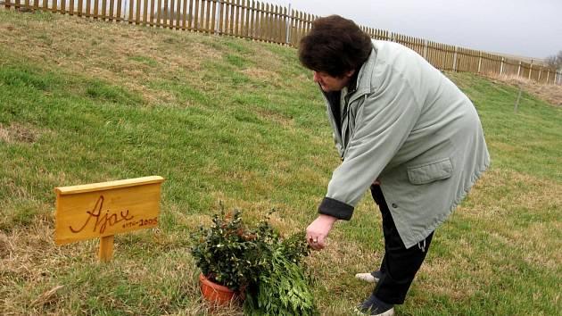 V Jedlové na Mariánskolázeňsku funguje psí hřbitov