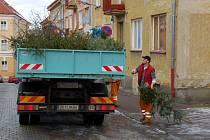 Odvoz vánočních stromečků k likvidaci