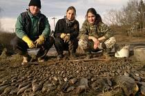 V Podhradu zachránili přes dva tisíce škeblí a desítky dalších živočichů.