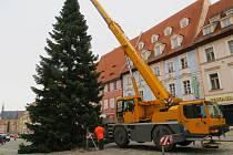 Vánoční strom už zase zdobí chebské náměstí Krále Jiřího z Poděbrad. Tentokrát se v horní části náměstí majestátně tyčí 24 metrů vysoká jedle bělokorá.