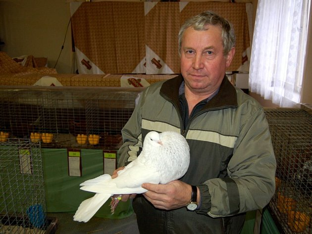 Výstava drobného zvířectva v Lipové u Chebu
