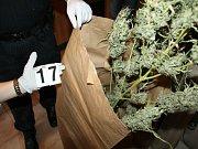 Boj proti drogové kriminalitě v Karlovarském kraji stále pokračuje. Důkazem toho je rozsáhlý policejní zákrok, který se uskutečnil na Mariánskolázeňsku.