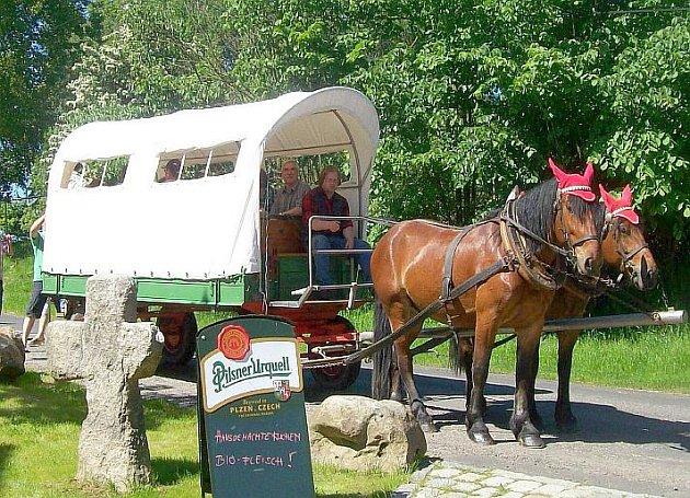 Na Golden River Ranche v Mlýnku u Skalné existuje možnost půjčit si koně, bryčku nebo třeba také plachtový vůz