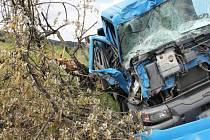 VE STROMĚ skončil náklaďák poté, co jeho řidič zajel na nezpevněnou krajnici.