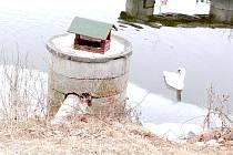 POŠKOZENÉ PTAČÍ krmítko u řeky Ohře, kterému neznámý vandal zlomil tyč. Buď si zkoušel svou sílu nebo mu jen vadí, když se někdo jiný o něco snaží.