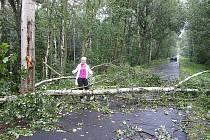 Polámané stromy zbyly po údajném tornádu u Chebu. Podle svědka se tornádo mělo vyskytnout na slapanské cyklostezce po bouřce. Meteorologové však potvrdili, že se jednalo o húlavu.