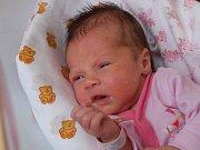 KAROLÍNA ŠMATOVÁ si poprvé prohlédla svět v neděli 22. listopadu v 17.13 hodin. Při narození vážila 3 170 gramů a měřila 50 centimetrů. Doma v Novém Kostele se z malé Karolínky těší maminka Kamila s tatínkem Václavem.
