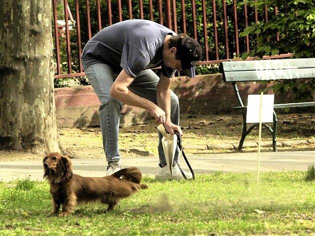 Ašská radnice rozdává pejskařům plastové sáčky na psí exkrementy, i když některým z nich se to nelíbí. Jak ovšem radnice podotýká, rozdávání sáčků není její povinnost, chce tím podpořit odpovědnost majitelů psů. Mnohdy zbytečně.