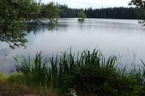 Jedna znejstarších a největších přírodních rezervací vregionu je Kladská.