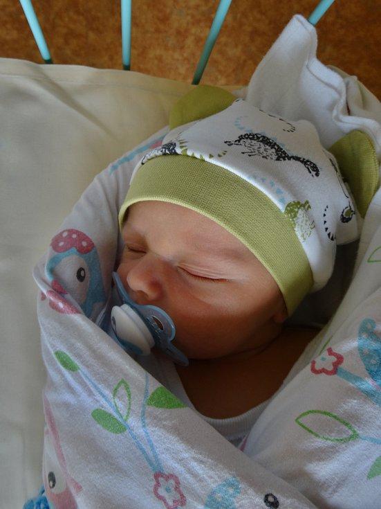 GEORG DÁVID se narodil 10. března 53 minut po půlnoci mamince Iren a tatínkovi Giyörgyovi z Mariánských Lázní. Po příchodu na svět v plzeňské Mulačově nemocnici vážil jejich prvorozený synek 3150 gramů a měřil 49 centimetrů.