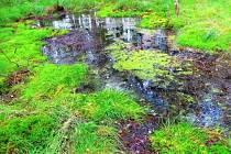 Největší únik oxidu uhličitého na západě Čech. Tak lze v krátkosti představit přírodní zajímavost na Chebsku. Její název je Bublák a nachází se asi dvanáct kilometrů od centra Chebu u obce Vackovec.