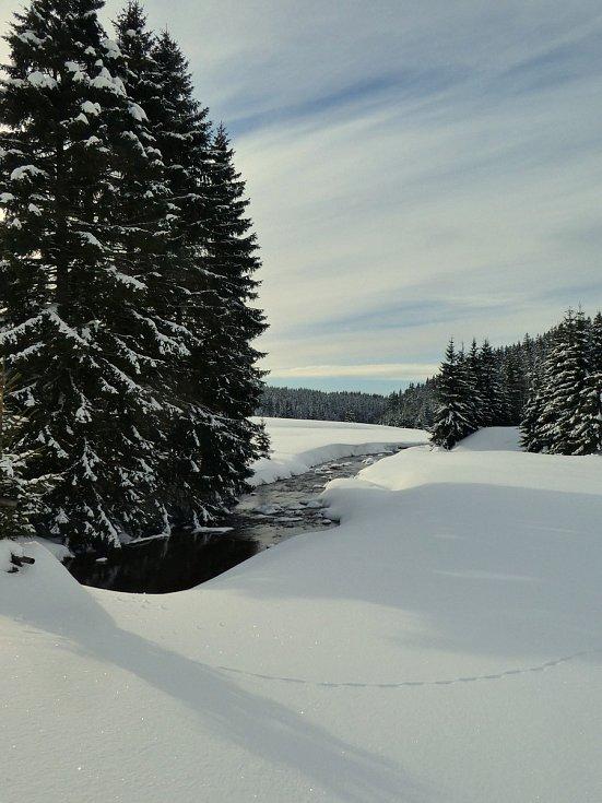 Údolí říčky Černé.