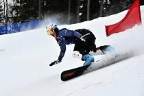 Čtvrtý ročník FIS Evropského poháru ve snowboardingu se konal v Mariánských Lázních.