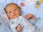 DAVID SEDLÁK se narodil v pondělí 7. března v 14.19 hodin. Při narození vážil 3 880 gramů a měřil 52 centimetrů. Z malého Davídka se těší doma v Lubech sestřička Karolínka, maminka Štěpánka a tatínek Jan.