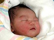 LE BAO NGOC, holčička, se narodila v pondělí 22. února v 11 hodin. Vážila krásných 3780 gramů a měřila 51 centimetrů. Doma ve Františkových Lázních se z dcerky raduje maminka Mai Huong s celou rodinou.