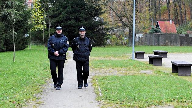 STRÁŽNÍCI Městské policie Cheb dostanou nové posily – koordinátory z řad nezaměstnané veřejnosti. Tito lidé budou upozorňovat na porušování veřejného pořádku.