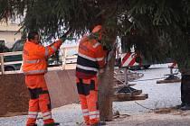 Chebské náměstí Krále Jiřího z Poděbrad ozdobily vánoční stromy.